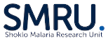 Shoklo Malaria Research Unit